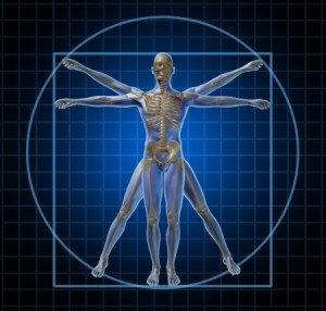 Anatomy_and_Physiology